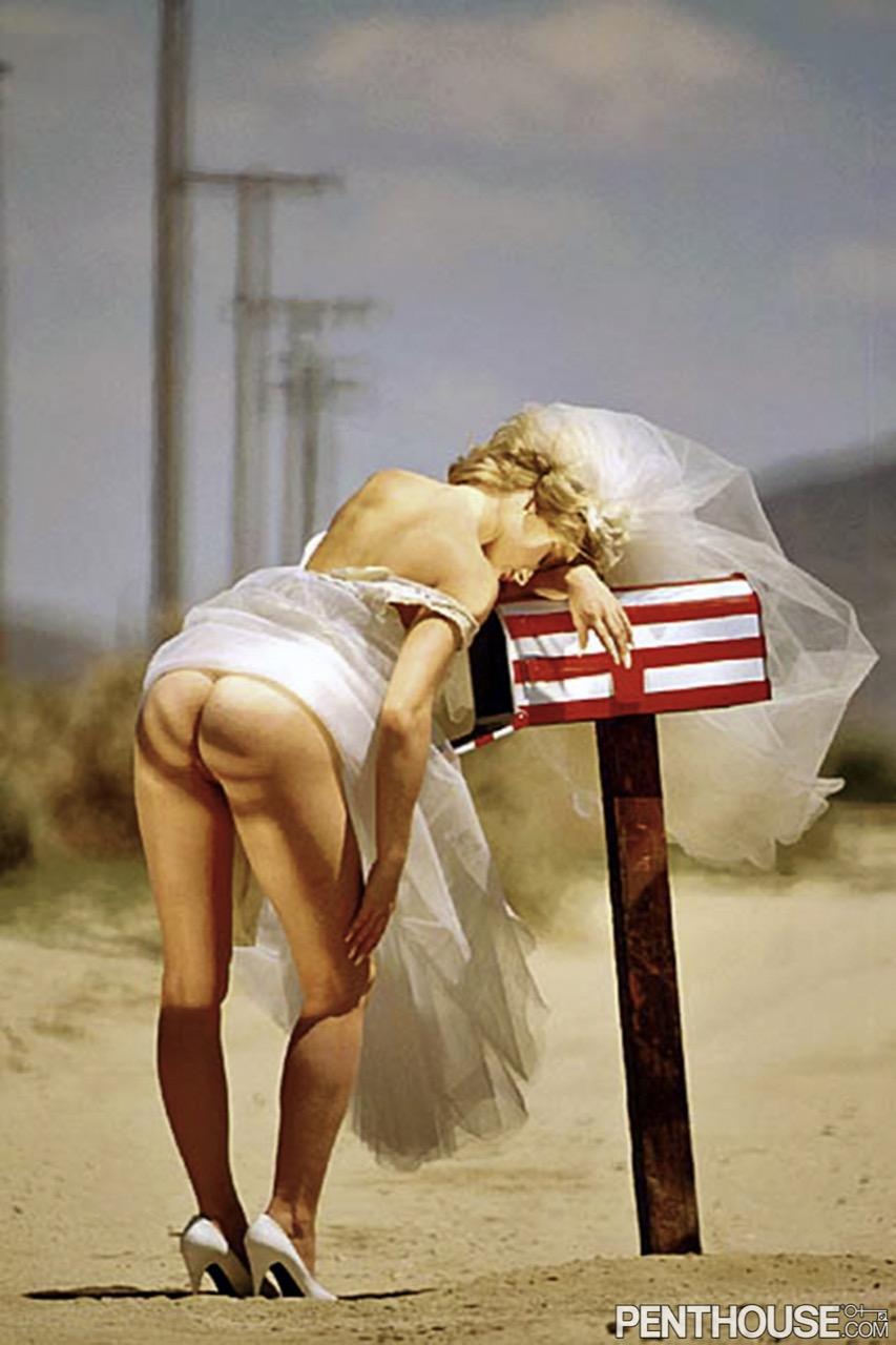 Pamela Peters nude. Pet Of The Month - October 1991